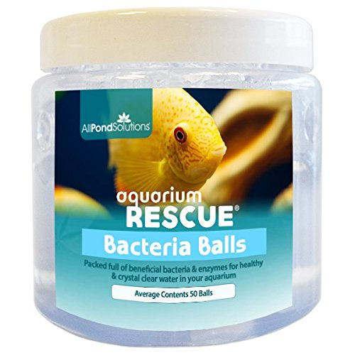 All Pond Solutions Aquarium Rescue Filtre Start bactéries Balles de Boost, 280 ML de All Pond Solutions