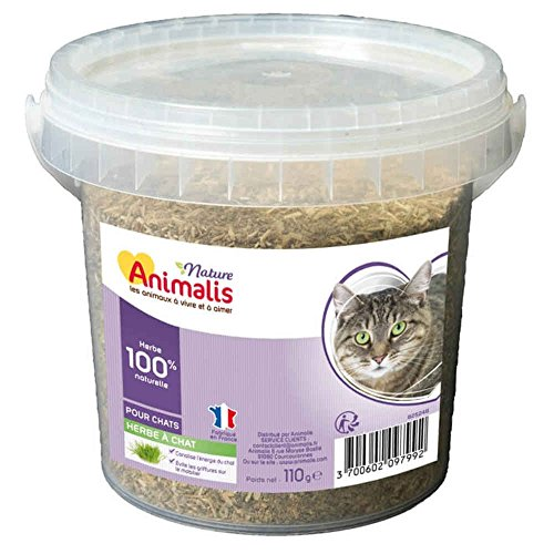 Animalis Herbe à Chat pour Chat Nature - 110g de Animalis