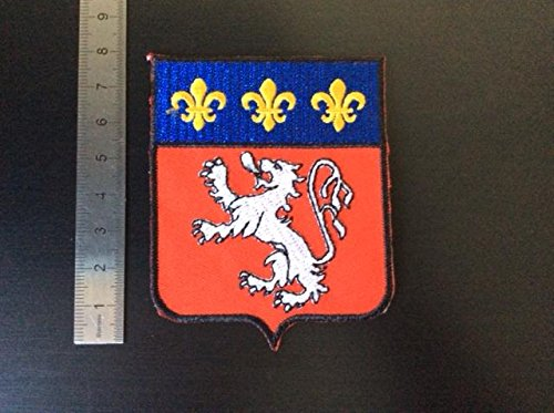 ECUSSON PATCHES AUFNAHER TOPPA - BLASON RHONE ALPES - THERMOCOLLANT de BLUE HAWAI