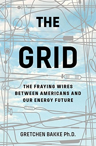 The Grid: The Fraying Wires Between Americans and Our Energy Future de Bloomsbury USA
