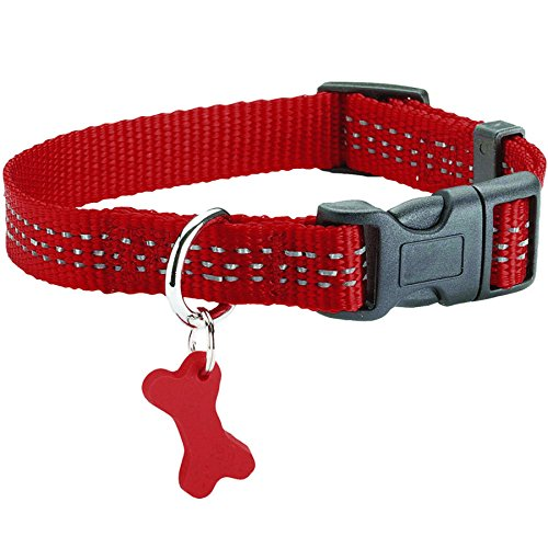 Bobby Safe Collier pour Chien Rouge Taille 25 de Bobby