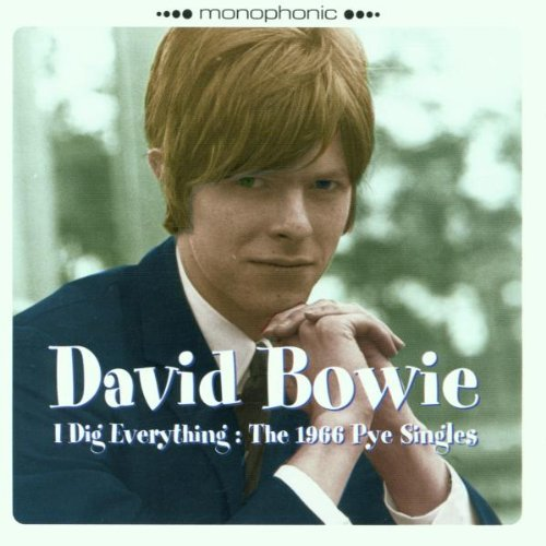 I Did Everything : The 1966 Pye Singles [Import USA] de Castle Distribution