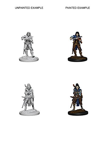 Pathfinder Roleplaying Game Unpainted Miniatures: Elf Female Bard de Dungeons & Dragons