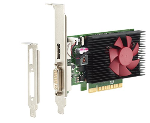 HP Carte Graphique DP NVIDIA GT 730 2 Go - Cartes Graphiques (GeForce GT 730, 2 Go, GDDR3, 64 bit, 4096 x 2160 Pixels, PCI Express x8 2.0) de HP