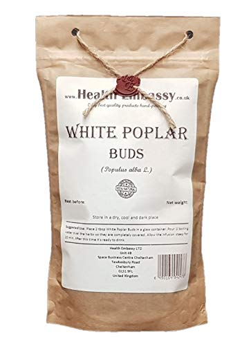 Peuplier Blanc Bourgeons 100g ( Populus alba L. ) / White Poplar Buds 100g - Health Embassy 100% Natural de HEALTH EMBASSY