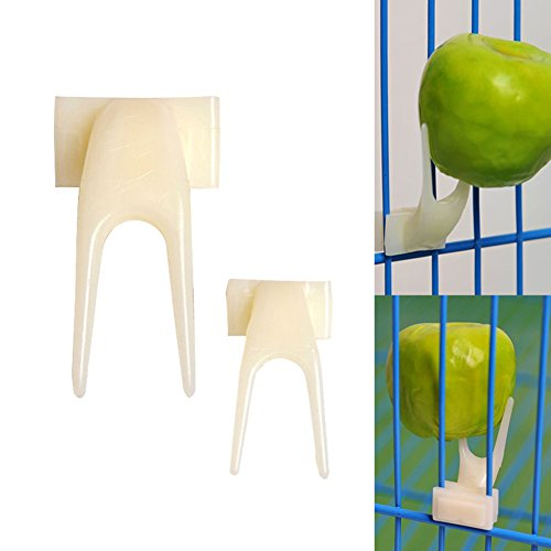 Hinmay Plastique Pet Parrot Fruit Fork Oiseaux Nourriture support Feeder Clip de broches perruches Canary Feeder Fournitures appareil, Lot de 2 de Hinmay