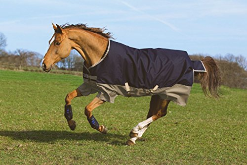 Horseware Mio Turnout Medium 200 g – Marine & Tan with Marine de Horseware