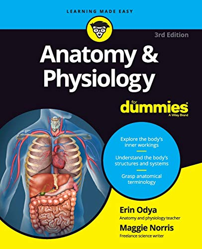 Anatomy and Physiology For Dummies, 3rd Edition de For Dummies
