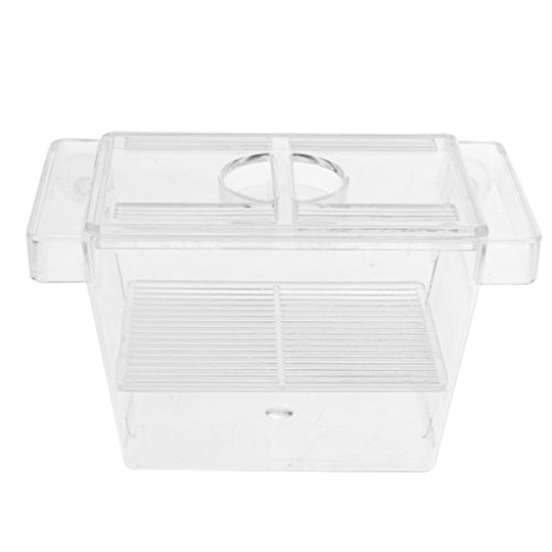 KESOTO Boîte de Reproduction Aquarium Transparent pour œuf d'Aquarium 128x70x72mm de KESOTO