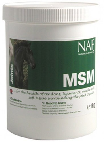NAF MSM Supplement (Pack Size: 300g Pot) de MSM