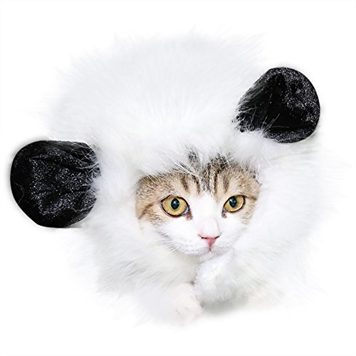 Miugee animaux chiens Chiot Chats Chapeau Perruque Costumes Fancy robes Cosplay de Miugee