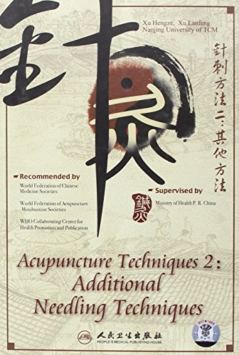Acupuncture and Moxibustion Techniques: Additional Needle Techniques Disk B de People's Medical Electronic & Audio-Visual Publishing House