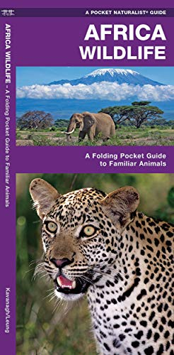 Africa Wildlife: A Folding Pocket Guide to Familiar Animals de Brand: Waterford Press