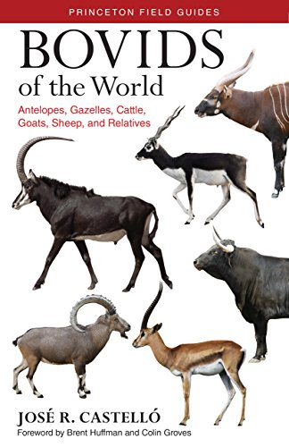 Bovids of the World: Antelopes, Gazelles, Cattle, Goats, Sheep, and Relatives de Princeton University Press