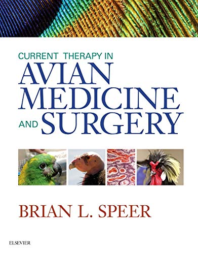 Current Therapy in Avian Medicine and Surgery de Saunders