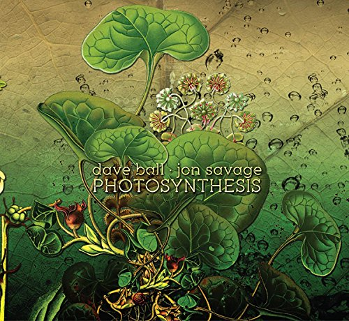 Photosynthesis [Import belge] de COLD SPRING