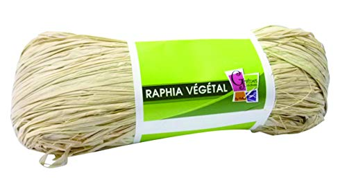 PW INTERNATIONAL Bobine Raphia végétal 50g coloris Nature de Pw International