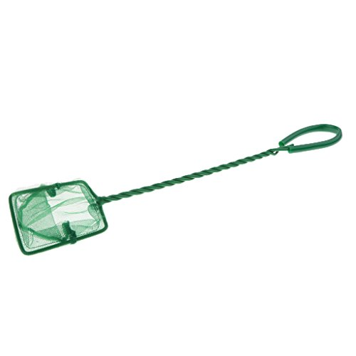 Sharplace Epuisette Aquarium en Plastique/Fil Vert - 3 Pouces de Sharplace