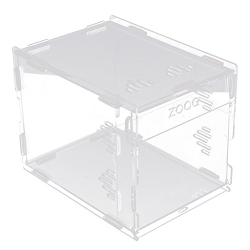 Sharplace Terrarium Reptiles Animaux Jeu Couchage pour Tortues Lézards Amphibiens - 17x17x22cm de Sharplace