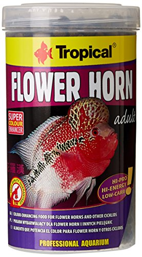 TROPICAL Flower Horn Adult Pellet Nourriture pour Aquariophilie 500 ml de TROPICAL