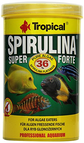 TROPICAL Super Spirulina Forte 36% Nourriture pour Aquariophilie 1000 ml de TROPICAL