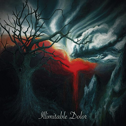 Illimitable Dolor [Import anglais] de Transcending Obscurity
