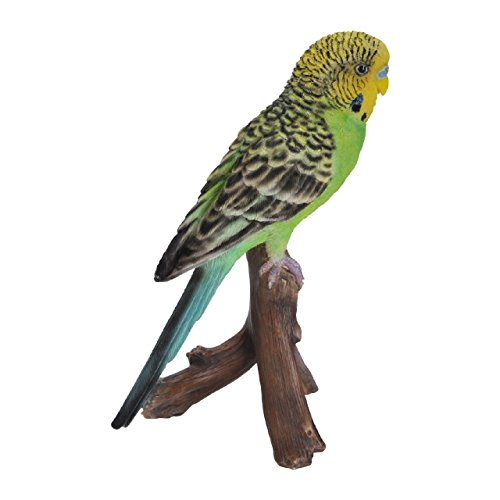 Green Budgerigar by Vivid Arts Ltd de Vivid Arts