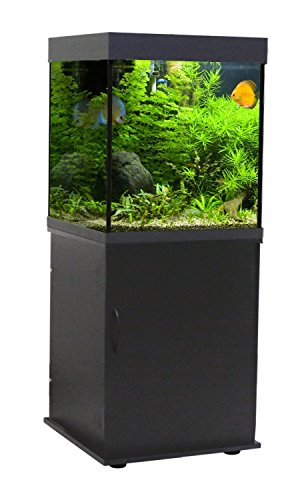 Wave Design Cube Cabinet Support Noir pour Aquariophilie 55 x 55 x 73 cm de Wave
