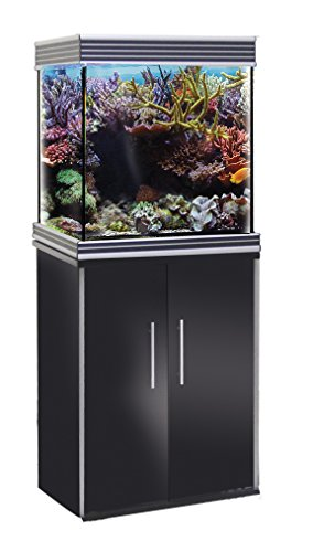 WAVE Design Cube Support pour Aquariophilie Glossy Noir 55 x 55 x 73 cm de Wave