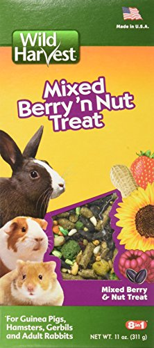 Wild Harvest G15889 L/h Animal de petite taille Berry Treat de Wild Harvest
