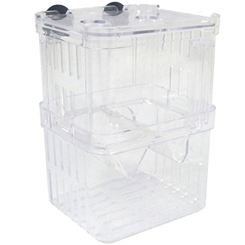 Zhhlaixing Accessoires d'aquarium High Quality Clear Plastic Self-floating Seperate Fish Fry Breeding Box de Zhhlaixing