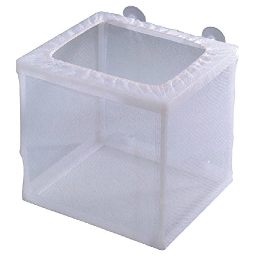 Zhhlaixing Accessoires d'aquarium High Quality Separation Box Fish Tank Breeding Tanks de Zhhlaixing