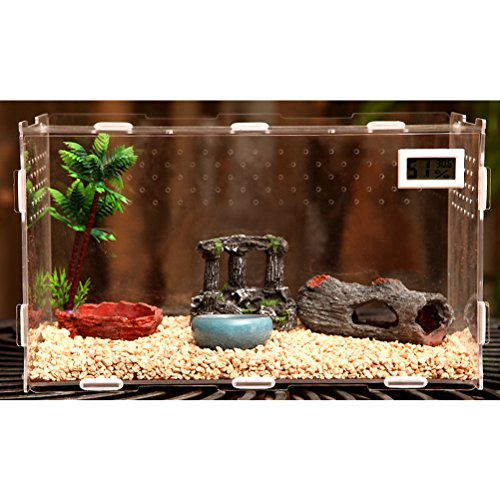 Zhhlaixing Fournitures pour animaux Transparent Durable Pets Amphibian Spider Habitat Cage Set Carry House with Temperature Display de Zhhlaixing