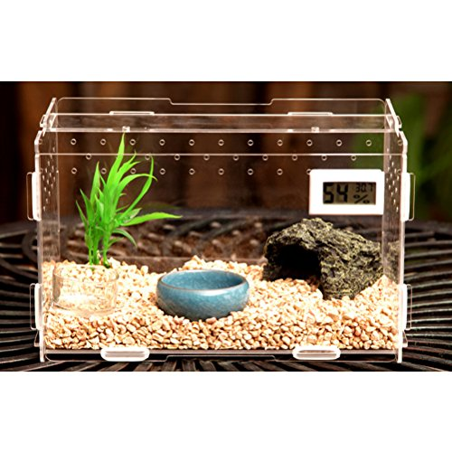 Zhhlaixing Fournitures pour animaux Transparent Pets Amphibian Spider Habitat Cage Set Carry House with Cover de Zhhlaixing