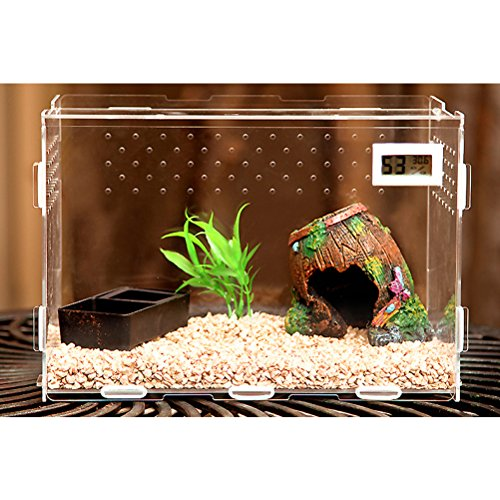 Zhhlaixing Fournitures pour animaux Transparent Pets Amphibian Spider Habitat Cage Set Carry House with Temperature Display de Zhhlaixing