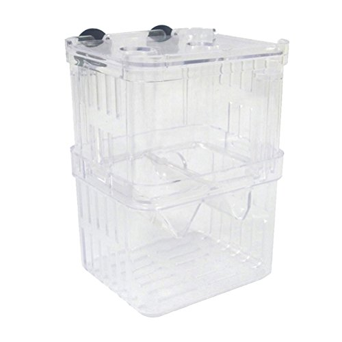Zhuhaitf Fournitures pour animaux Self-floating Fish Fry Breeding Box Hatchery Isolation Clear Tank de Zhuhaitf